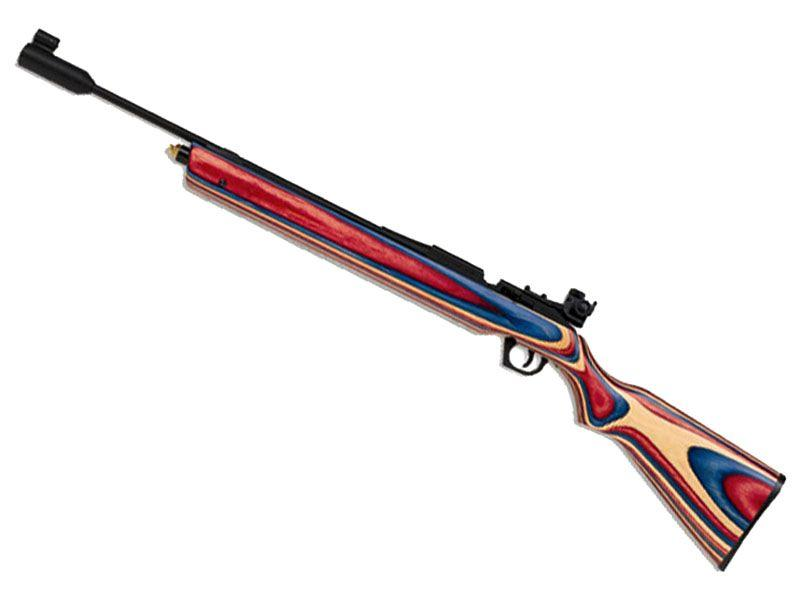 Daisy 888 Medalist Competition CO2 Air Rifle